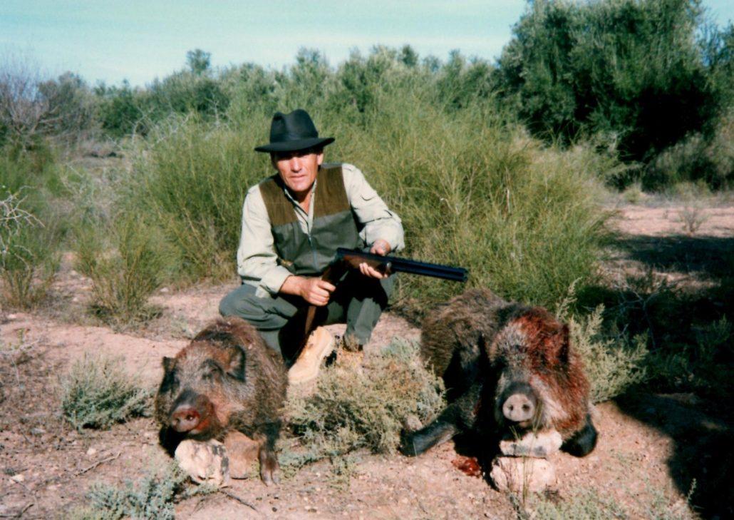 Autentic chasse - chasse des sangliers au maroc