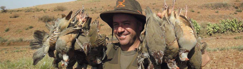 autentic chasse - chasse des perdrix au maroc