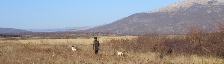 autentic chasse -,chasse en bosnie