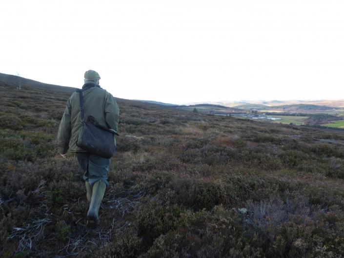 Autentic Chasse - chasse des grouses en ecosse