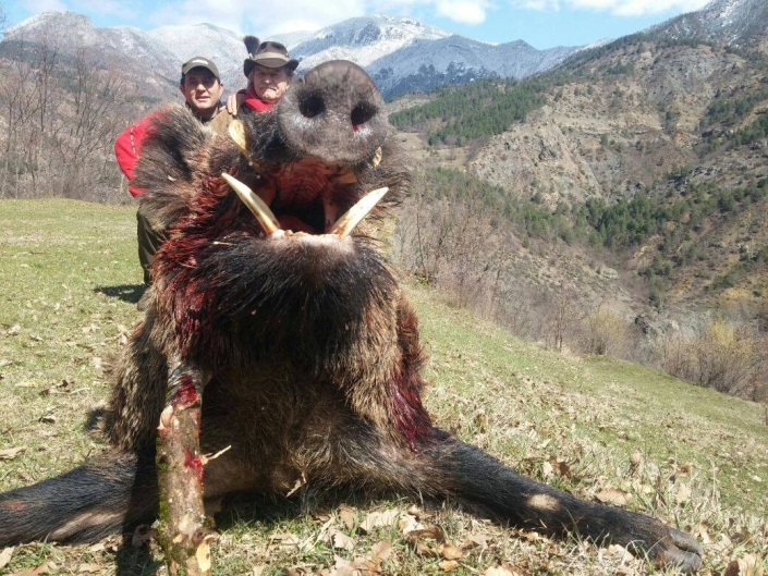 Autentic Chasse - chasse sangliers en Turquie