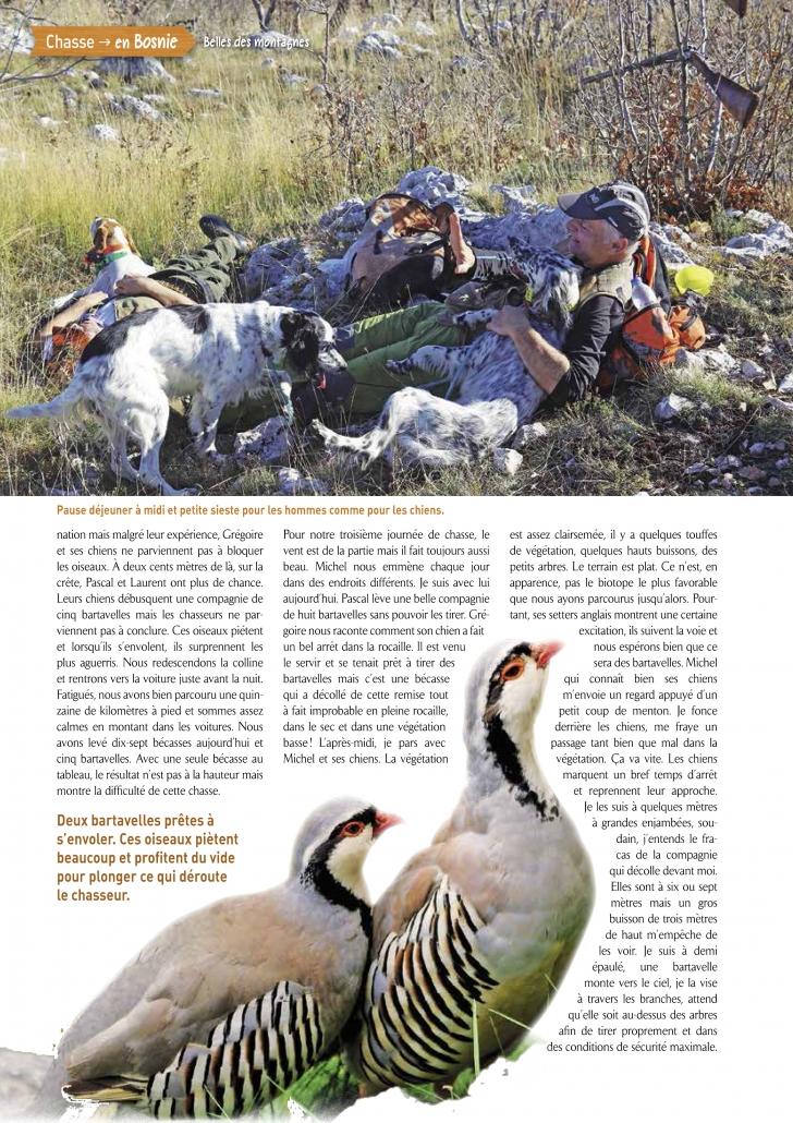 Autentic Chasse - chasse des becasses en bosnie
